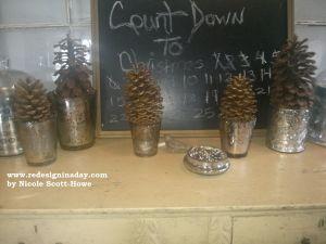 pineconetreeswm